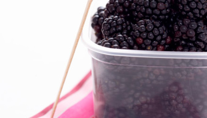 Blackberries offer tasty treats during the summer.