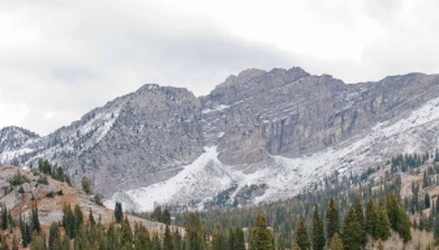 This alpine area is one example of an ecosystem.