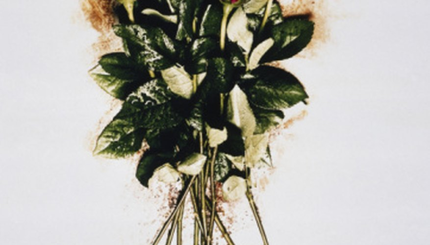 Flower stems and buds are often drawn with colored pencils using photo referencing.