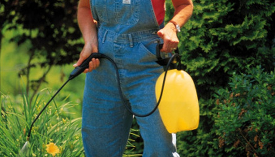 Homemade spray fertilizers are a great way to make your garden bright and beautiful.