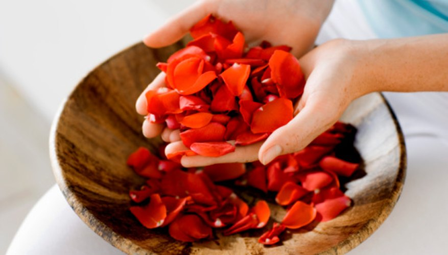 Rose petals can be preserved for months by freeze-drying them.