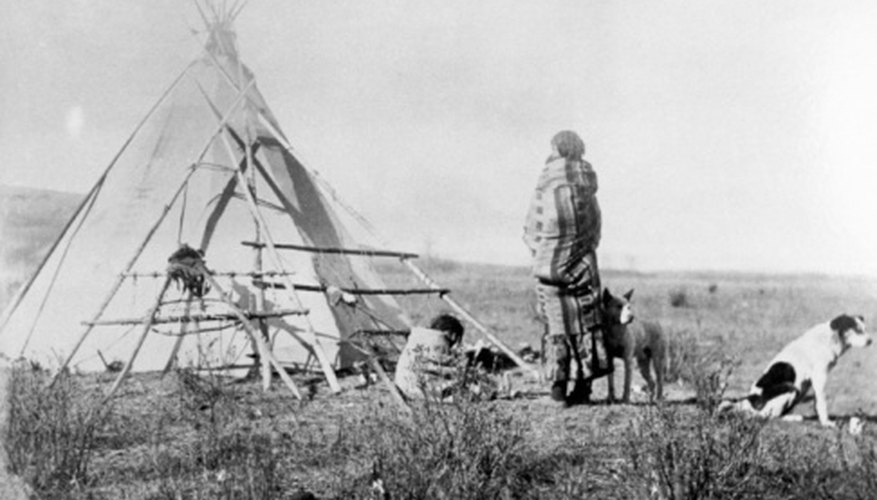 The Cree Indians inhabited northeastern Canada and the United States.