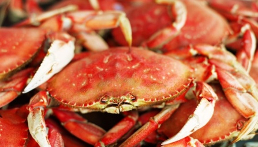 Crab shells can be used to fertilize the soil in your garden.