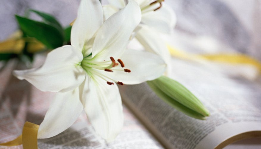Easter lilies can be placed on and around the altar.