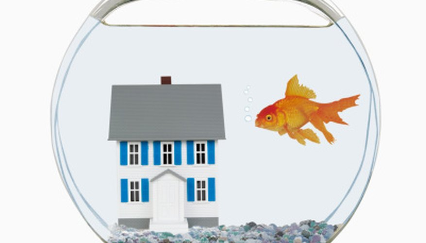 Decide what your fish is jumping out of, whether it's a fish bowl, aquarium or ocean.