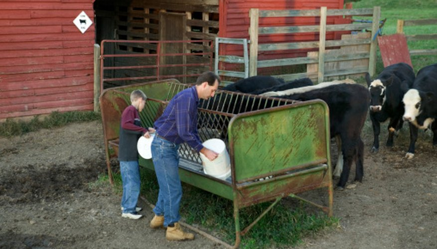 How to Build a Feed-Trough for Cattle