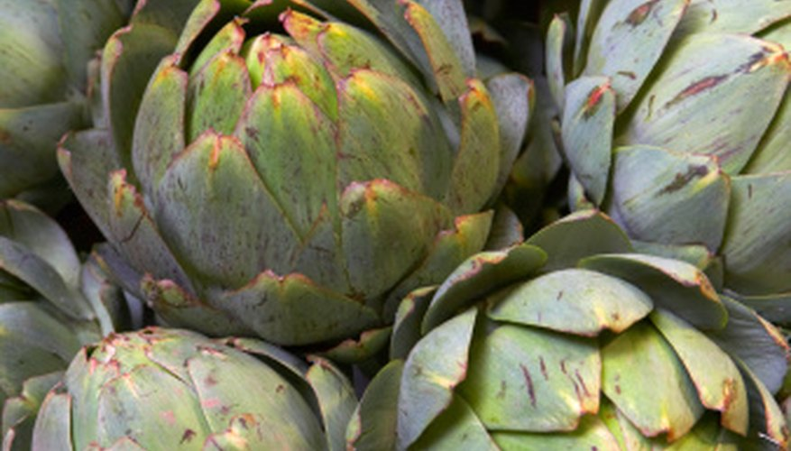 Artichokes are part of the sunflower family.