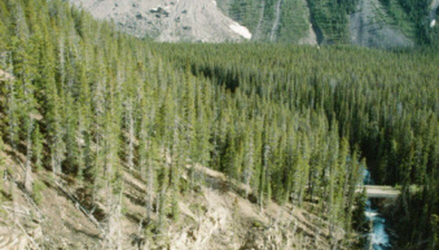 Landslides are a natural result of weathering and erosion.