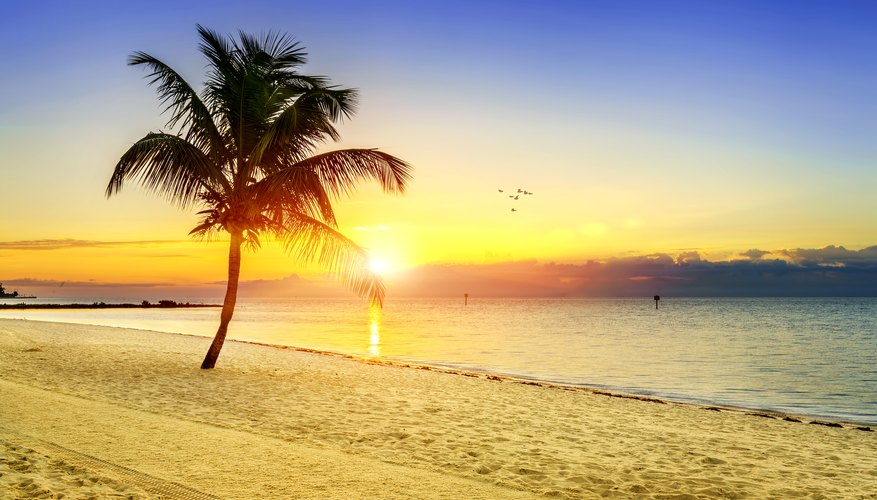 Best Time to View Sunrises in Key West