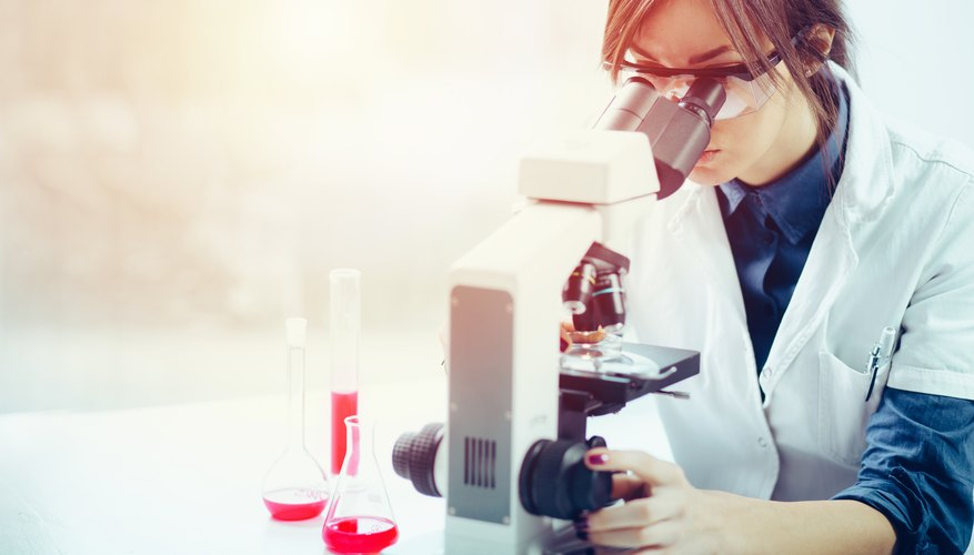 Women are behind some of the most significant discoveries in every STEM field.