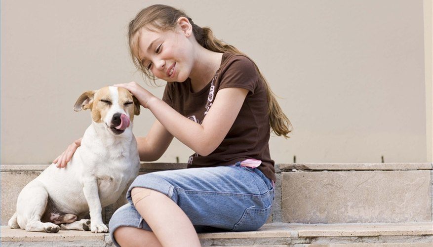 Teach Children to be Kind to Animals