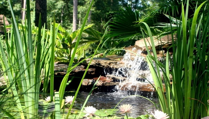 A soothing pond waterfall.