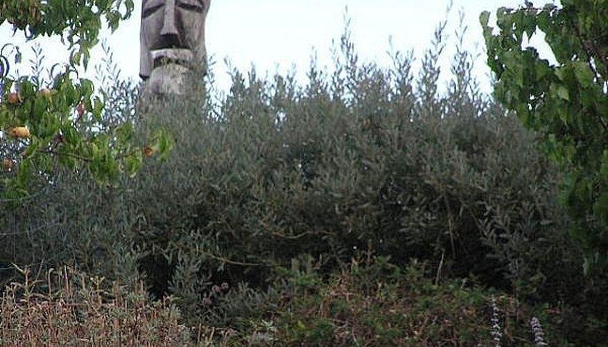 Tree trunk totem pole