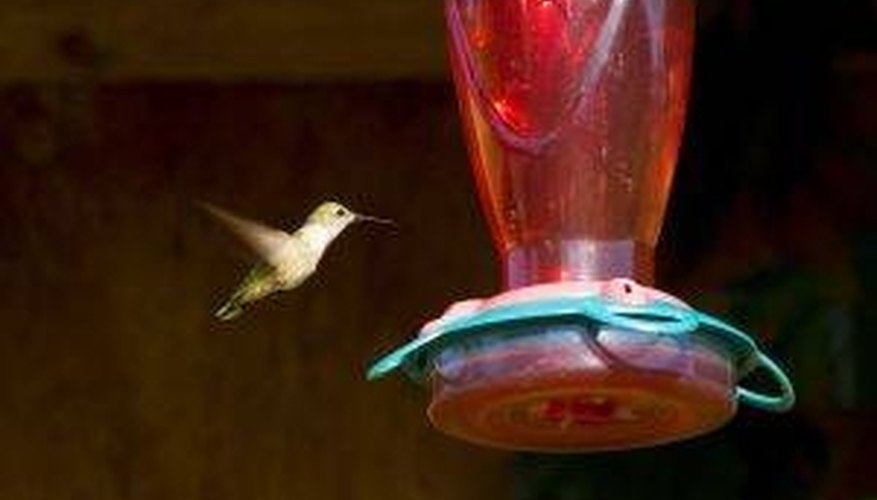 Make Hummingbird Food for Feeders