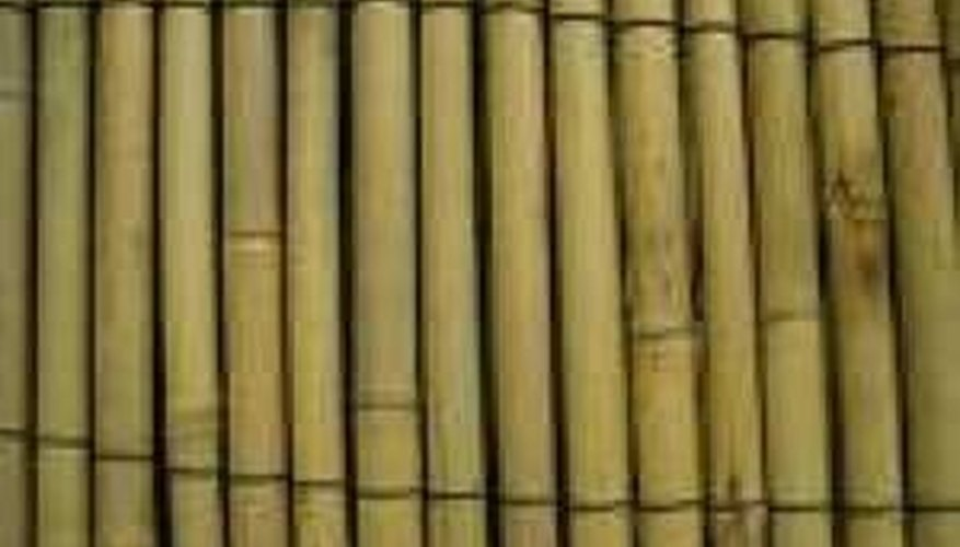 Bamboo Sticks for Outdoor Bamboo Blind