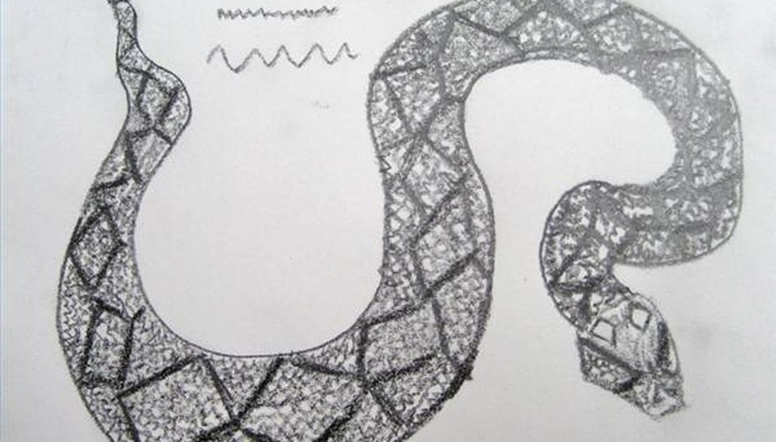 Draw the scales on the diamondback rattlesnake.