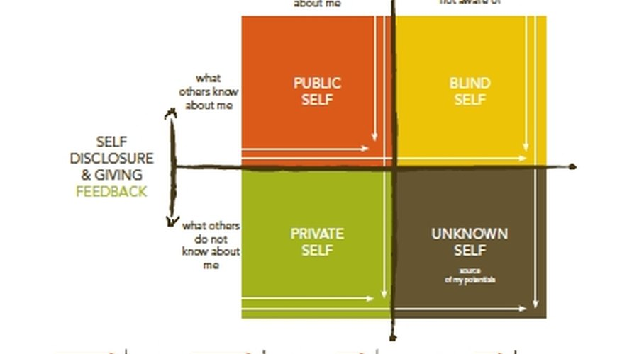 Use the Johari Window Model