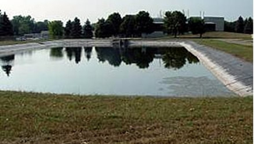Catfish can be farmed almost anywhere in North America.