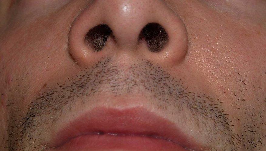 Air enters the nose via the nostrils.