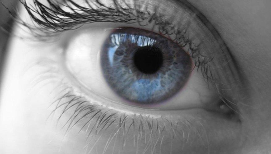 Types of Eye Shapes