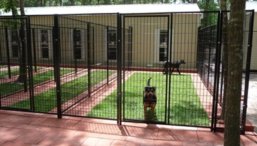 How to build dog suites a modern boarding kennel for Building a dog kennel business