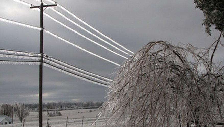 Ice storms can cause poplars to lose branches and limbs.
