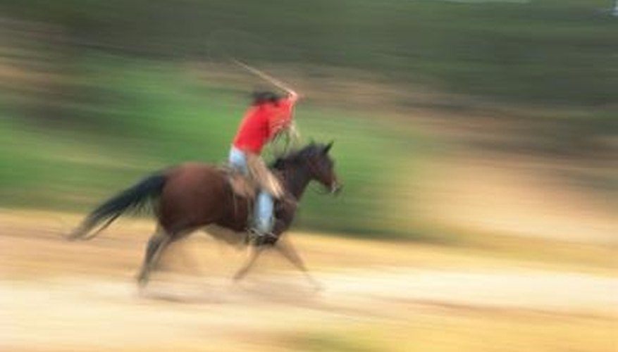 A well-trained roping horse is a critical component.