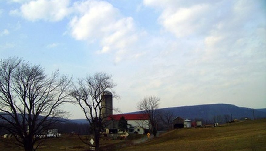 Small farms may provide a variety of products.