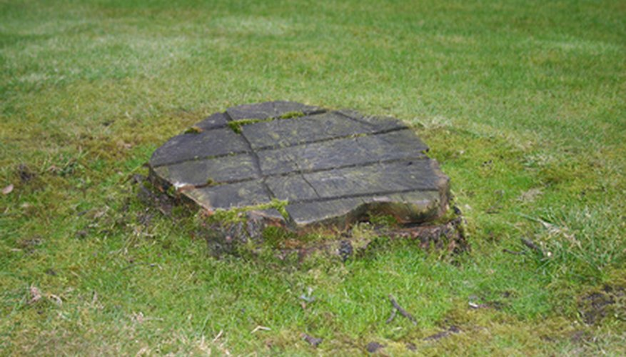 A tree stump can be dangerous and unsightly.