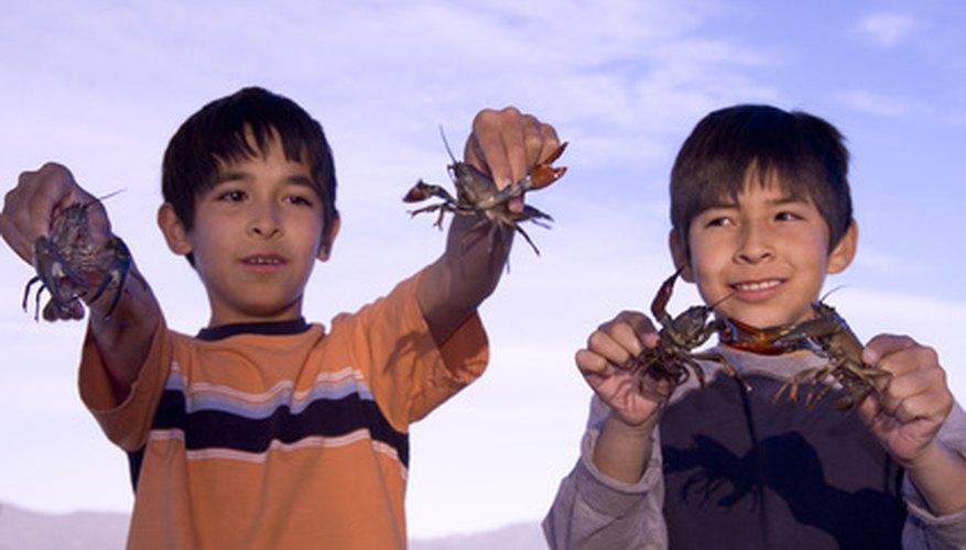 children holding crawfish