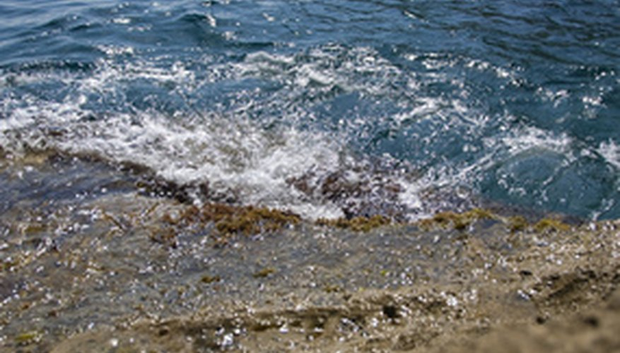 Shorelines are most vulnerable to erosion effects.