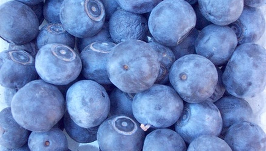 Blueberry ink comes from mashed blueberries.