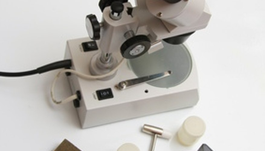 A light microscope allows the examination of tiny objects.