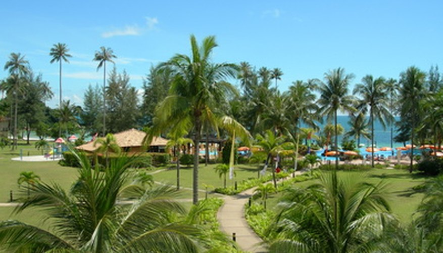 Beach resorts are popular with many vacationers.