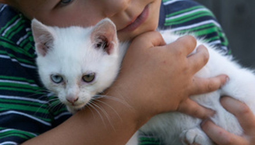 Young children and pets can accidentally swallow pesticides if they are within reach.