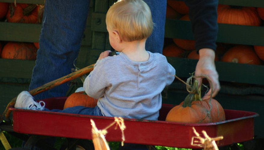 The Radio Flyer is the quintessential litte red wagon.