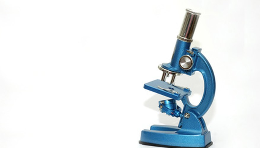 A compound light microscope allows you to view cells and bacteria.
