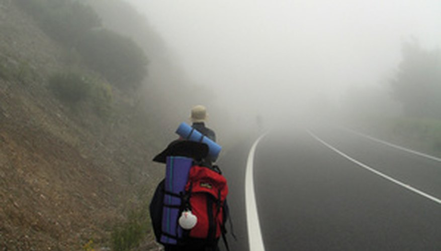 Galicia is a wetter region of Spain, where mixed woodlands are found.