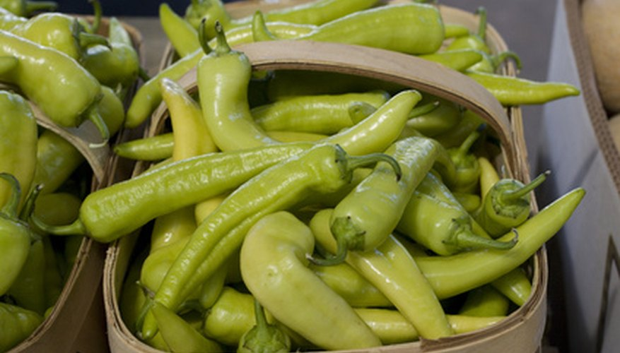 Banana Peppers are usually yellow when harvested, turning red as it matures.