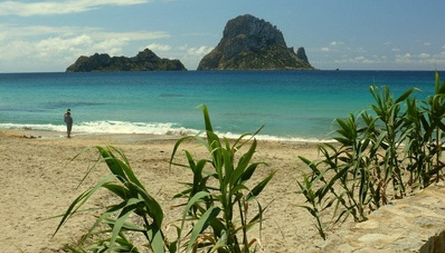 Most business opportunities in Ibiza are linked to the tourist and service industries.