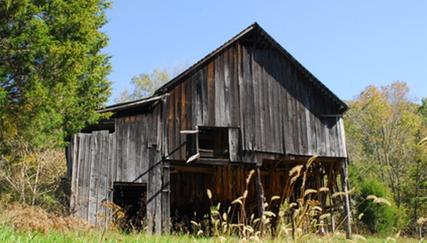 Traditional barn dances are held in a barn