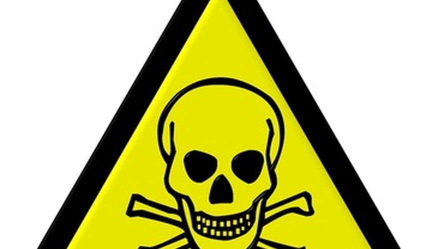 A worldwide problem of software piracy