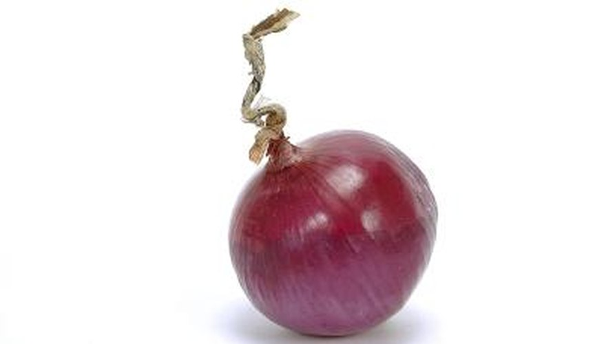 Purple onions store well.