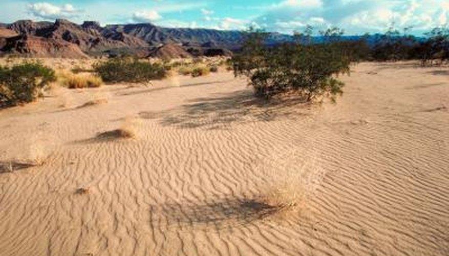 View of the Mojave Desert in Arizona