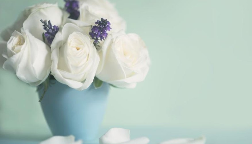 Softly scented roses pair with lavender sprigs for a calming bedside bouquet.