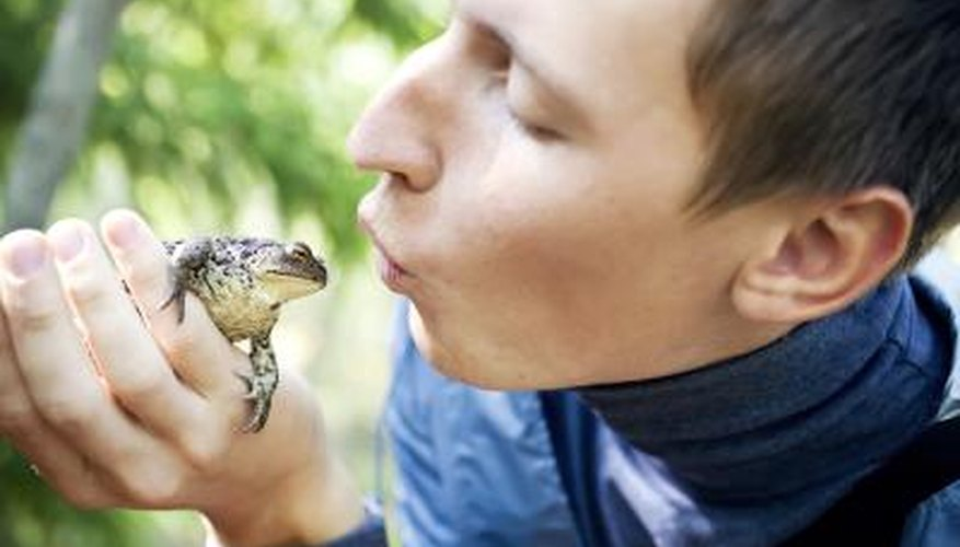 Frogs and humans share a similar body structure.