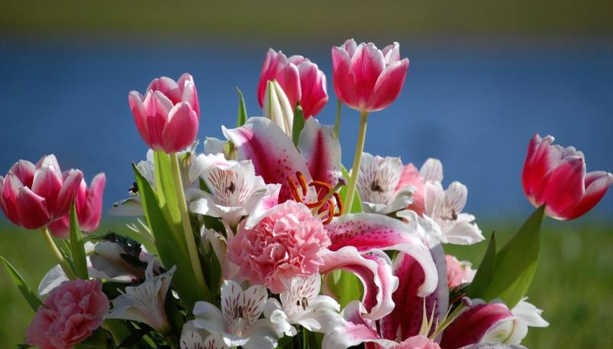 Fragrance-free tulips balance Stargazer lily's intense, spicy scent.