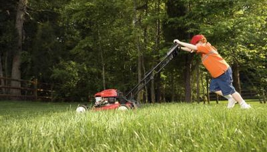 Mowing lawns is another way to earn cash.