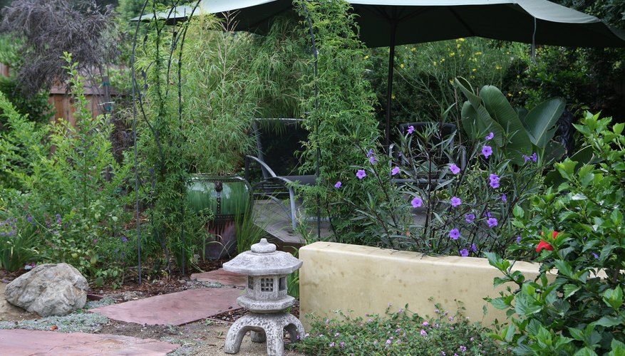 A landscape designer can xeriscape in a variety of styles.