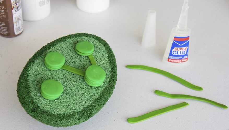 how to make chloroplast out of clay